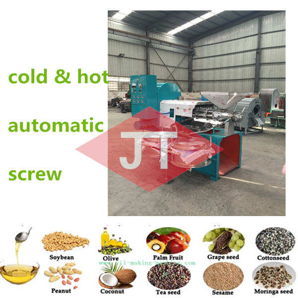 screw cold press oil extractor