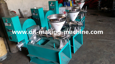 China cold press oil extractor