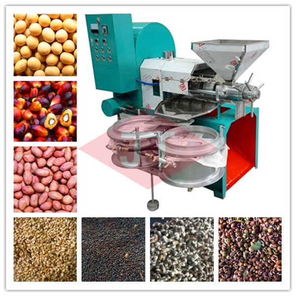 seed oil making machine