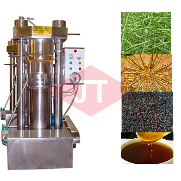 vegetable seeds cold press oil extractor